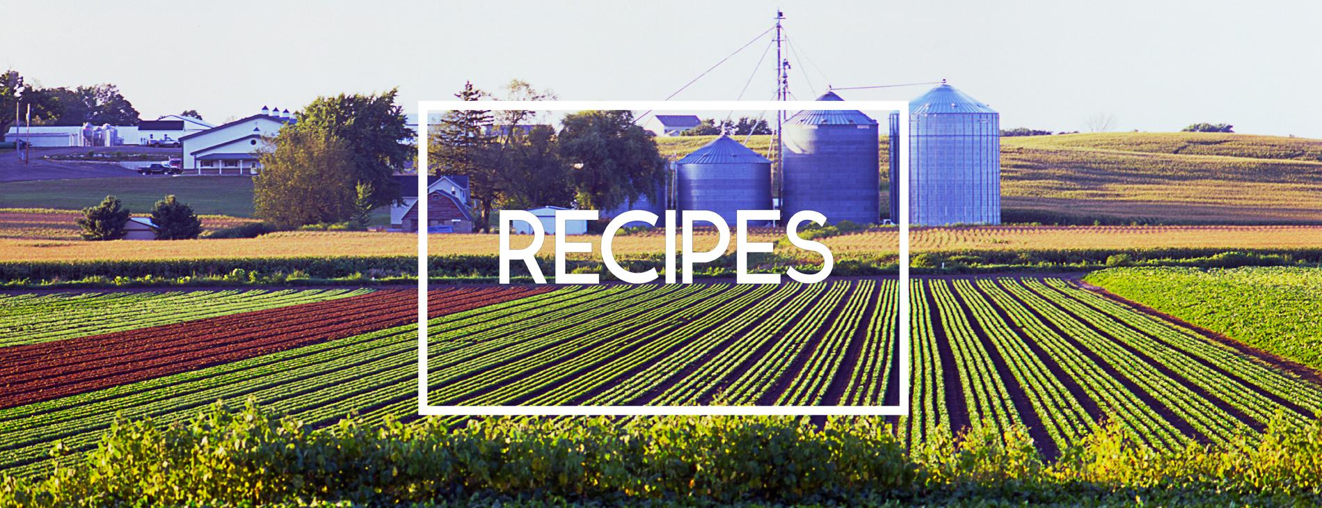 Michigan Healthy Food Recipes